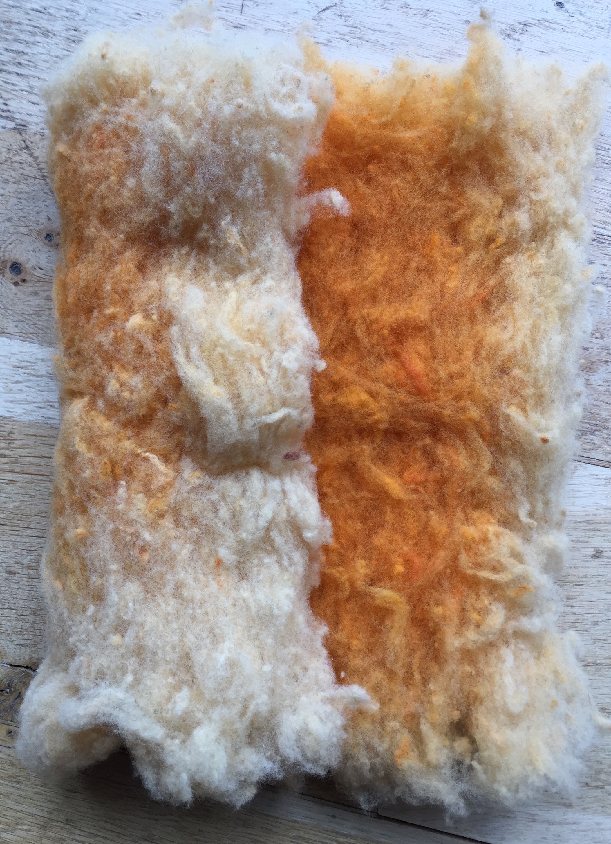 Annetto dyed fleece