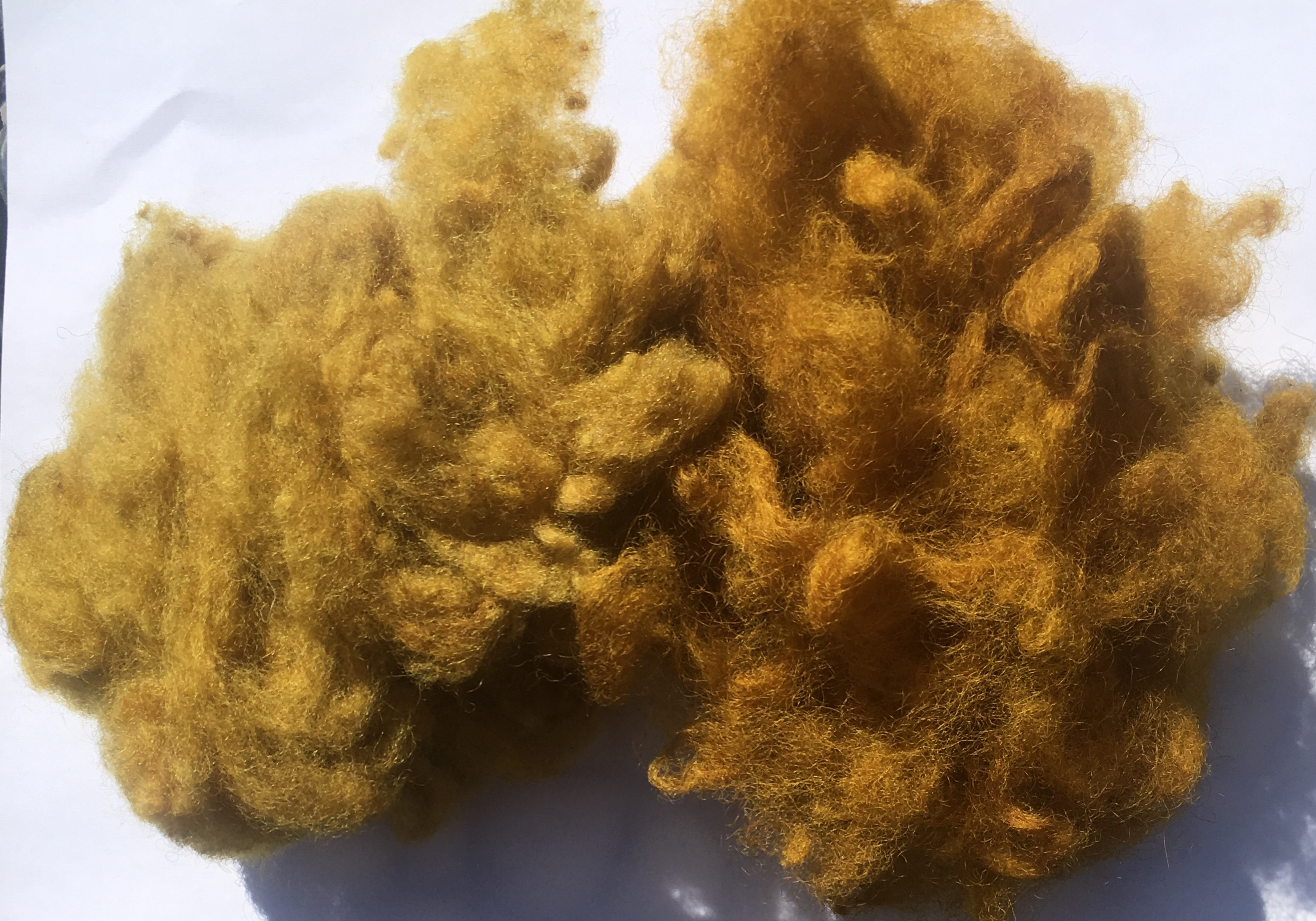 Marigold-dyed fleece